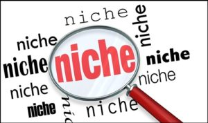 niche là gì