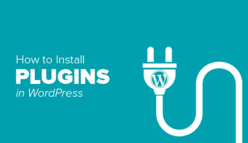 các plugin hay cho wordpress
