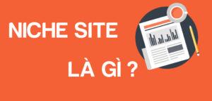 niche site là gì