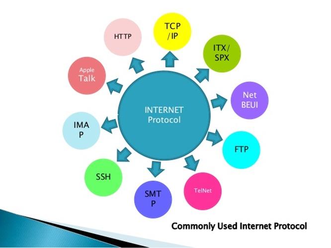 protocols là gì