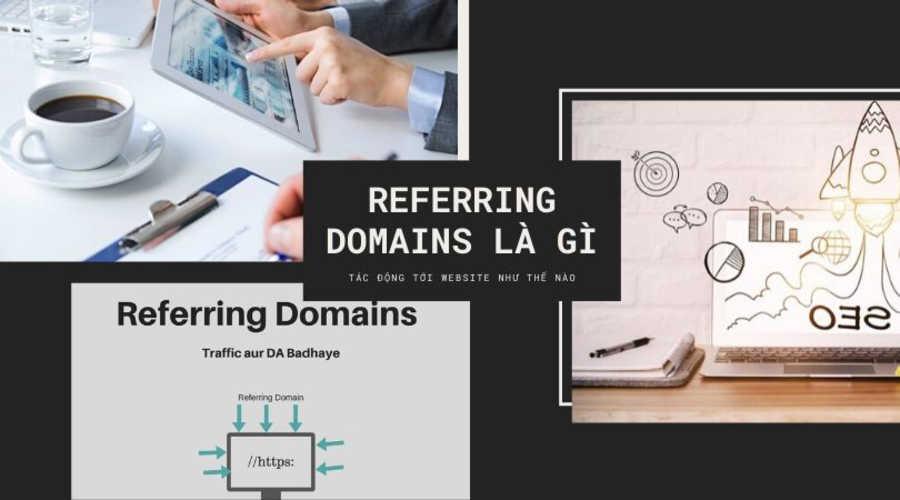 referring domains là gì