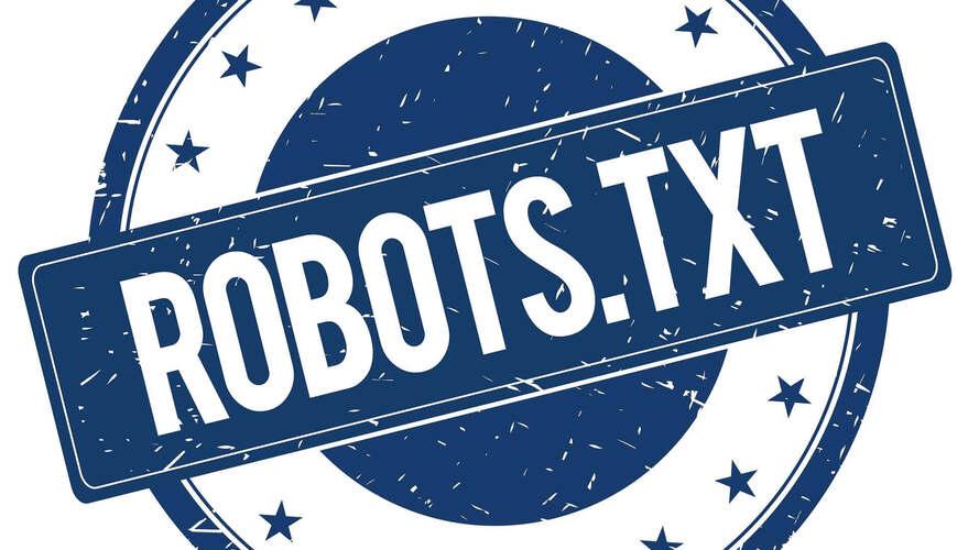 file Robots.txt Wordpress