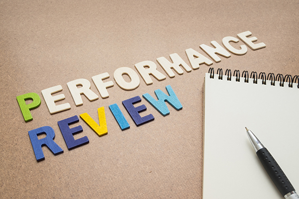 performance review là gì