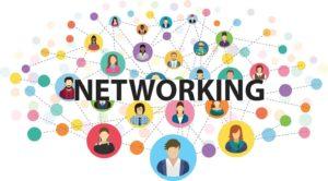 network là gì