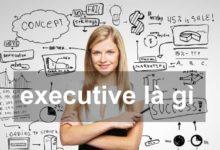 executive là gì