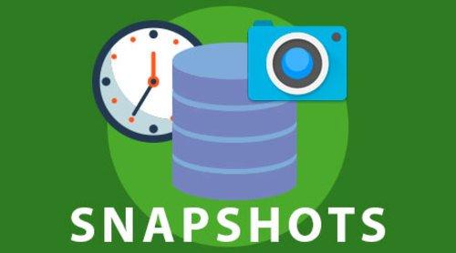 snapshot meaning